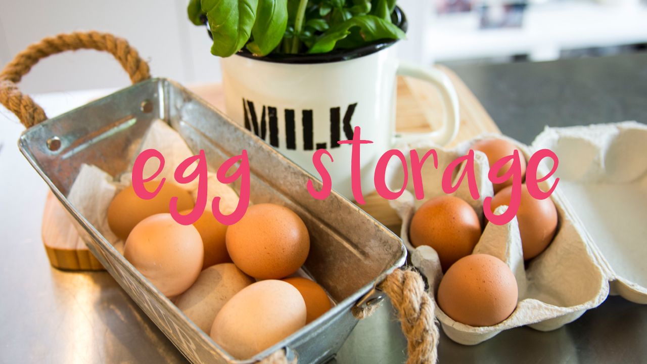 Eggs : Fridge or Pantry - Jax Food Hax